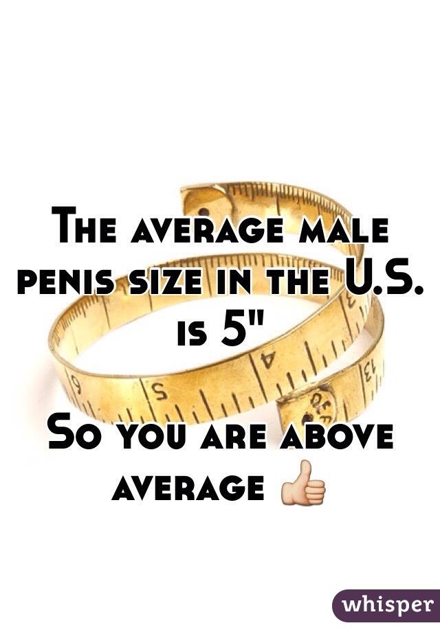 Average male pens size