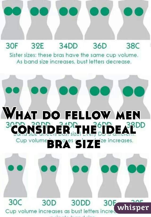 What size breasts do men like