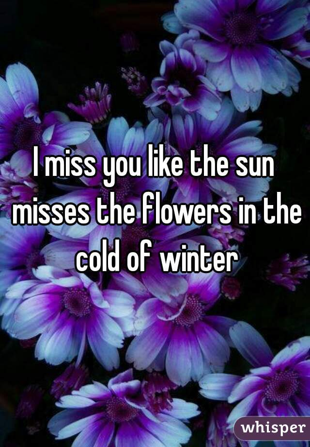 i miss you like the sun misses the flowers in the cold of winter
