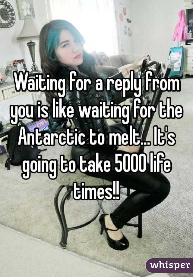 Waiting for a reply from you is like waiting for the Antarctic to melt... It's going to take 5000 life times!!