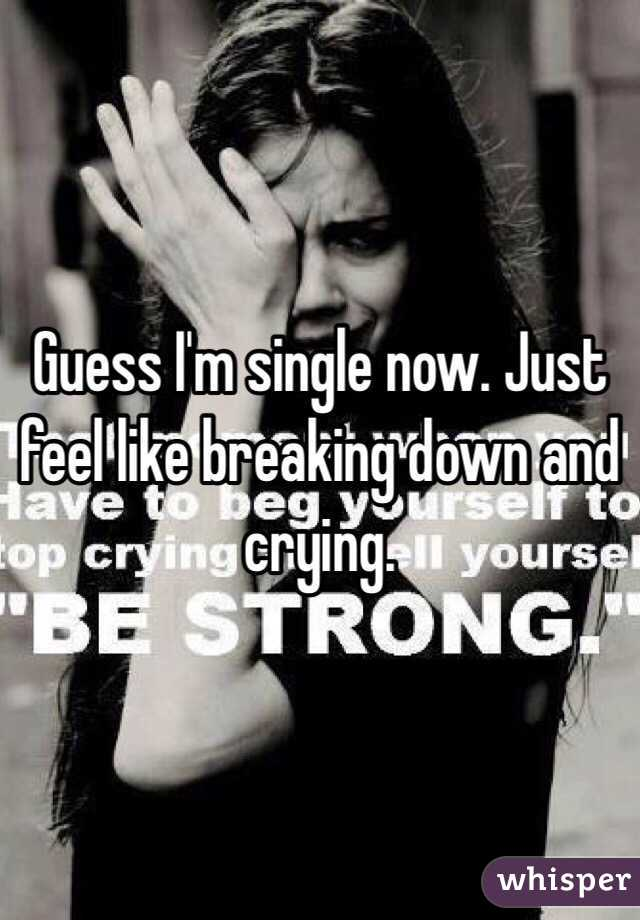 Guess I'm single now. Just feel like breaking down and crying.
