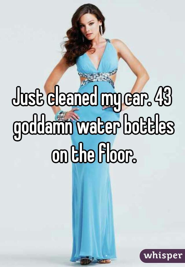 Just cleaned my car. 43 goddamn water bottles on the floor.