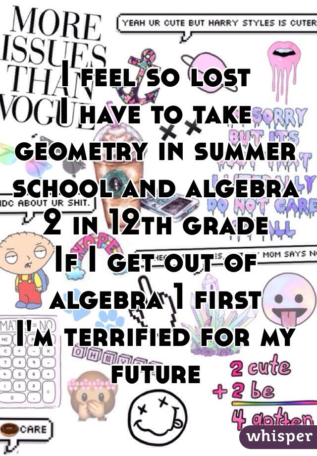 I feel so lost  I have to take geometry in summer school and algebra 2 in 12th grade If I get out of algebra 1 first  I'm terrified for my future