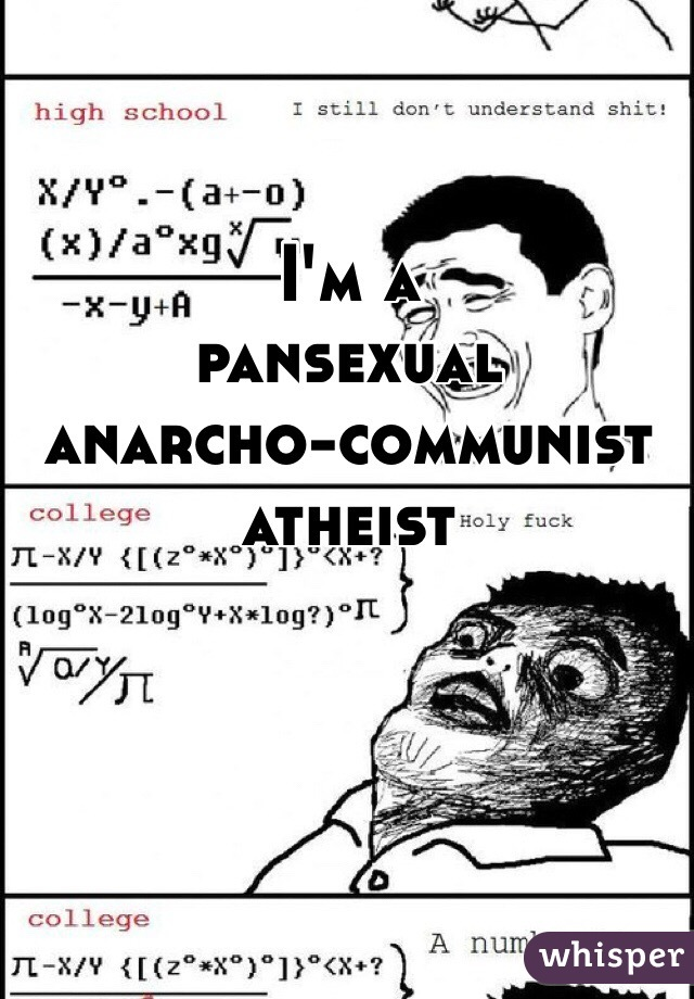 I'm a  pansexual  anarcho-communist  atheist