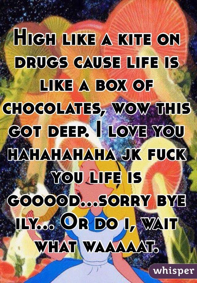 High like a kite on drugs cause life is like a box of chocolates, wow this got deep. I love you hahahahaha jk fuck you life is gooood...sorry bye ily... Or do i, wait what waaaaat.