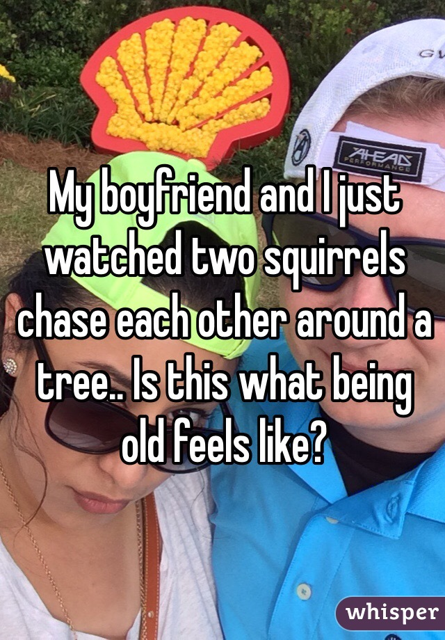 My boyfriend and I just watched two squirrels chase each other around a tree.. Is this what being old feels like?