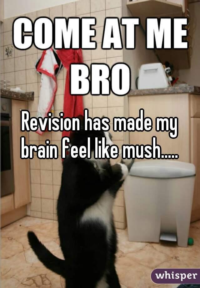 Revision has made my brain feel like mush.....