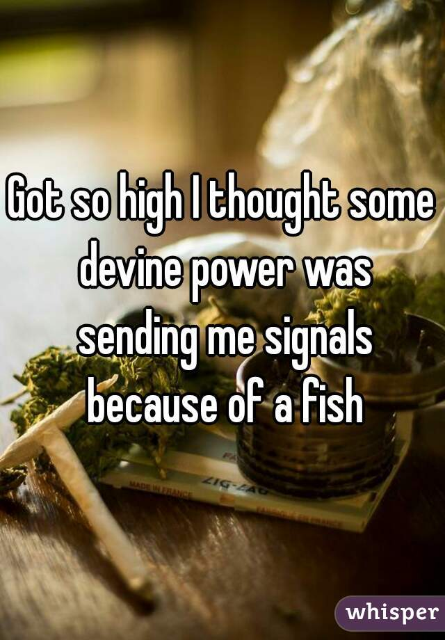 Got so high I thought some devine power was sending me signals because of a fish