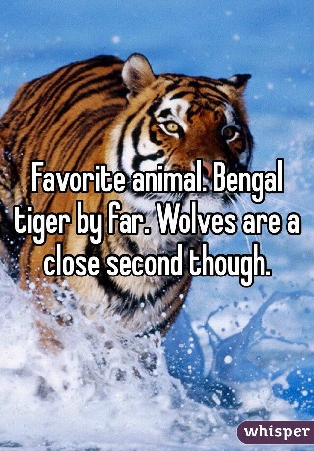 Favorite animal. Bengal tiger by far. Wolves are a close second though.