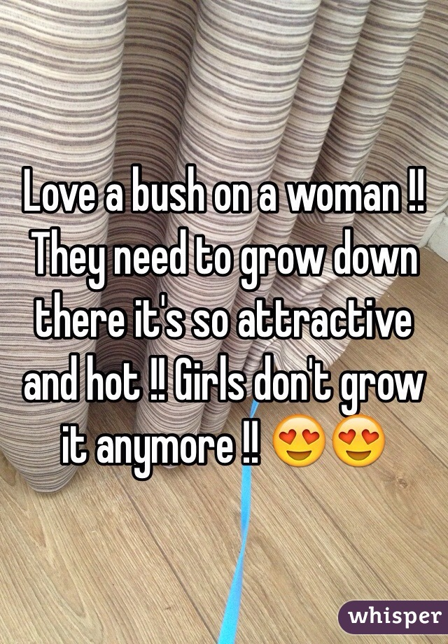 Love a bush on a woman !! They need to grow down there it's so attractive and hot !! Girls don't grow it anymore !! 😍😍