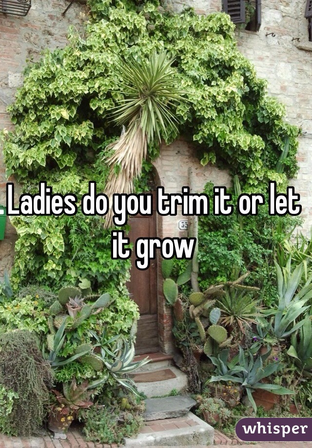 Ladies do you trim it or let it grow
