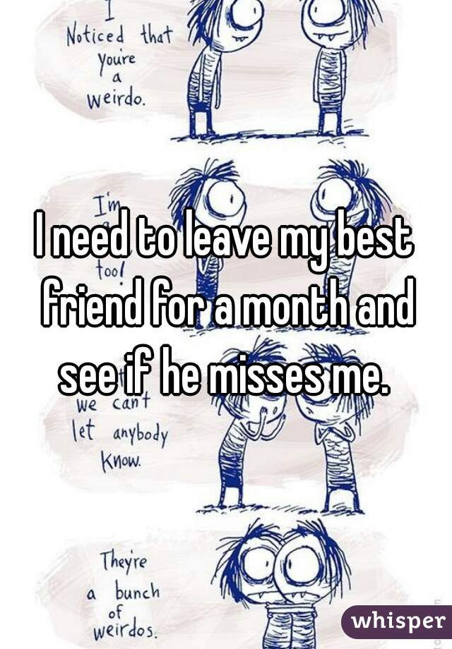 I need to leave my best friend for a month and see if he misses me.