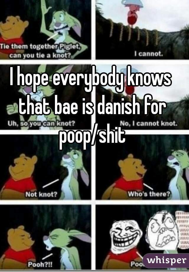 I hope everybody knows that bae is danish for poop/shit