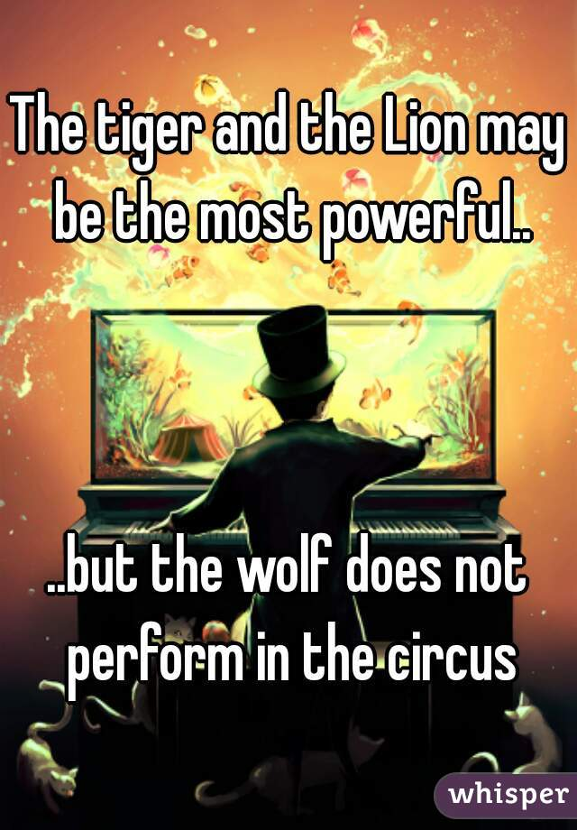 The tiger and the Lion may be the most powerful..    ..but the wolf does not perform in the circus
