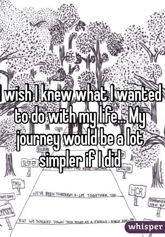I wish I knew what I wanted to do with my life... My journey would be a lot simpler if I did