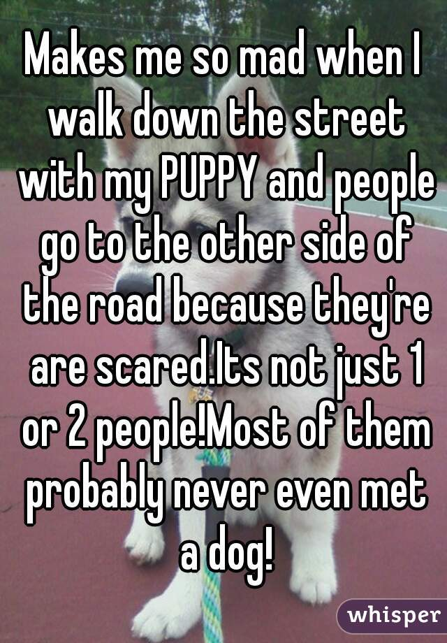 Makes me so mad when I walk down the street with my PUPPY and people go to the other side of the road because they're are scared.Its not just 1 or 2 people!Most of them probably never even met a dog!