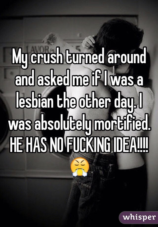 My crush turned around and asked me if I was a lesbian the other day. I was absolutely mortified. HE HAS NO FUCKING IDEA!!!! 😤
