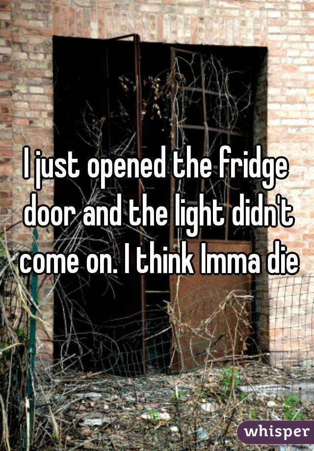 I just opened the fridge door and the light didn't come on. I think Imma die
