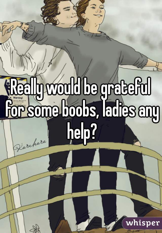 Really would be grateful for some boobs, ladies any help?