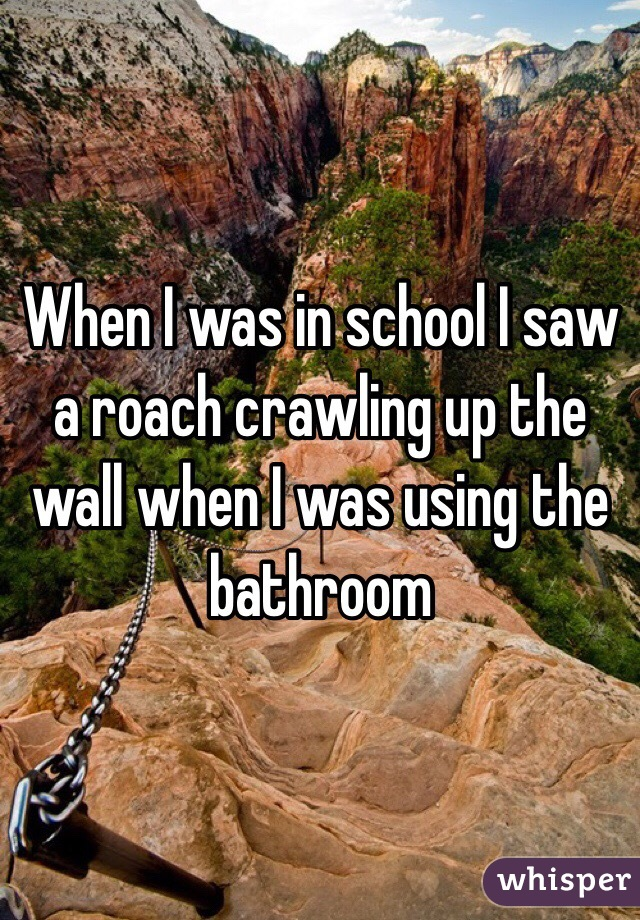 When I was in school I saw a roach crawling up the wall when I was using the bathroom