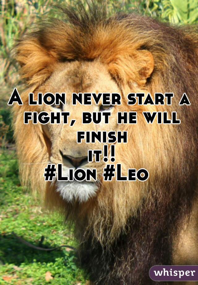 A lion never start a fight, but he will finish it!! #Lion #Leo