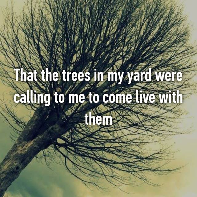 That the trees in my yard were calling to me to come live with them