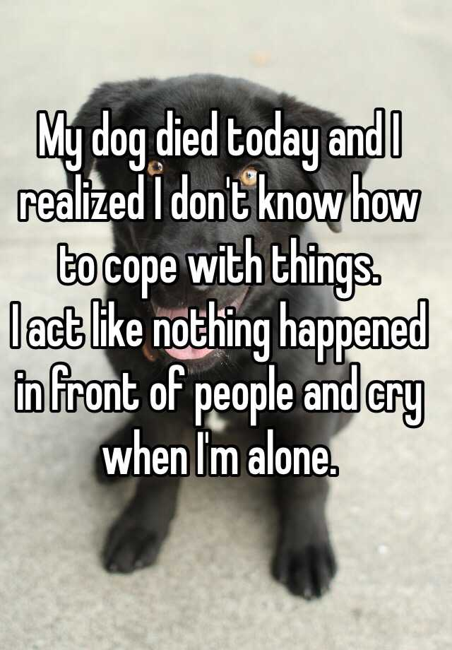 my dog died today and i realized i don t know how to cope with