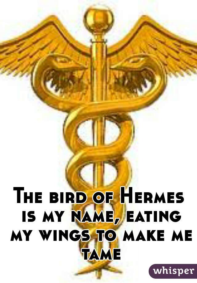 The Bird Of Hermes Is My Name Eating My Wings To Make Me Tame