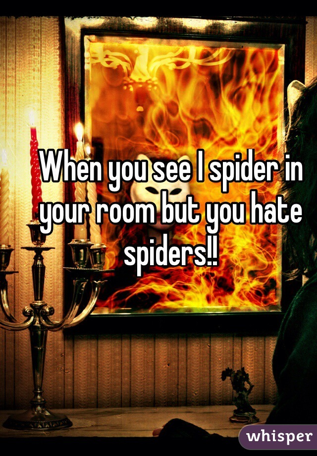 When you see I spider in your room but you hate spiders!!