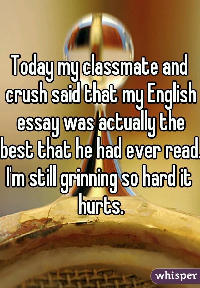 about my classmates essay