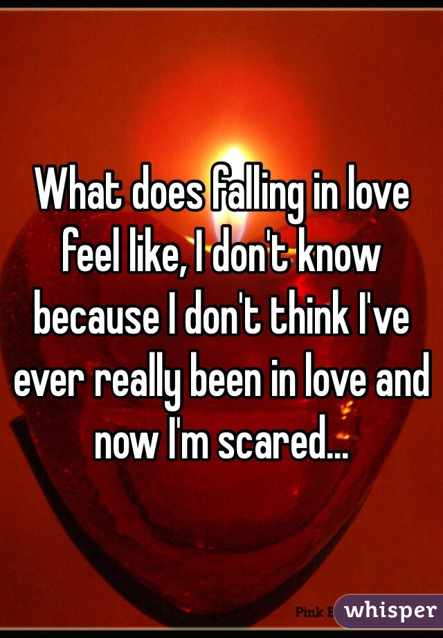 What does falling in love feel like, I don't know because ...