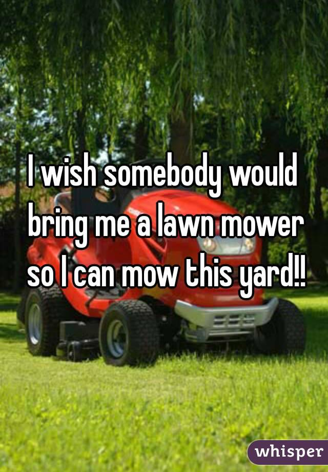 I wish somebody would bring me a lawn mower so I can mow this yard!!