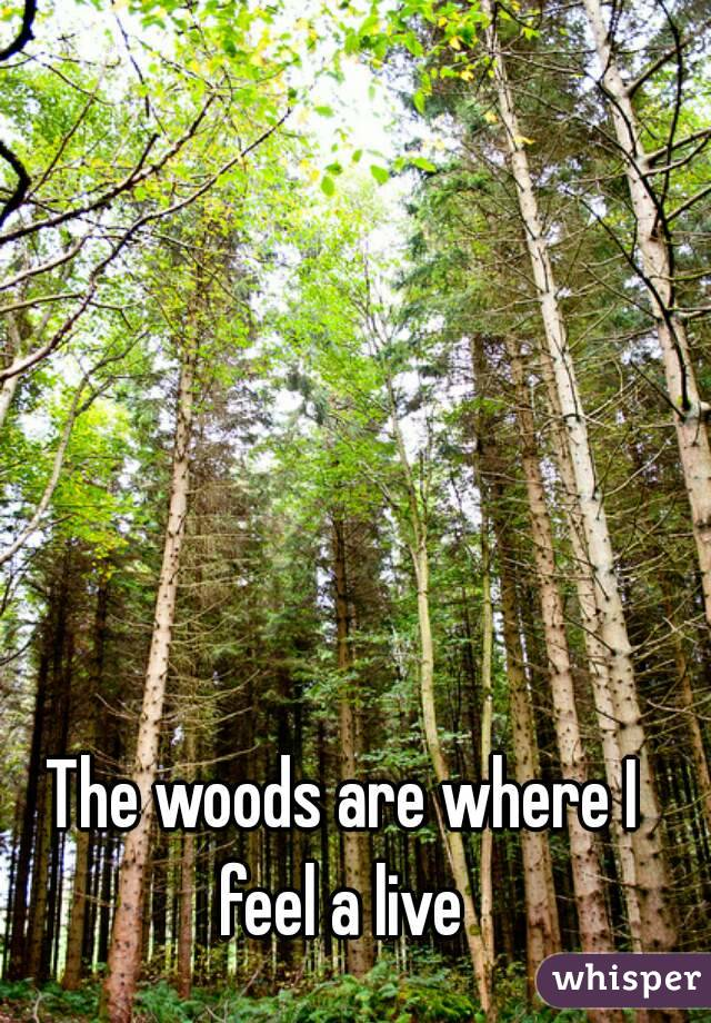 The woods are where I feel a live