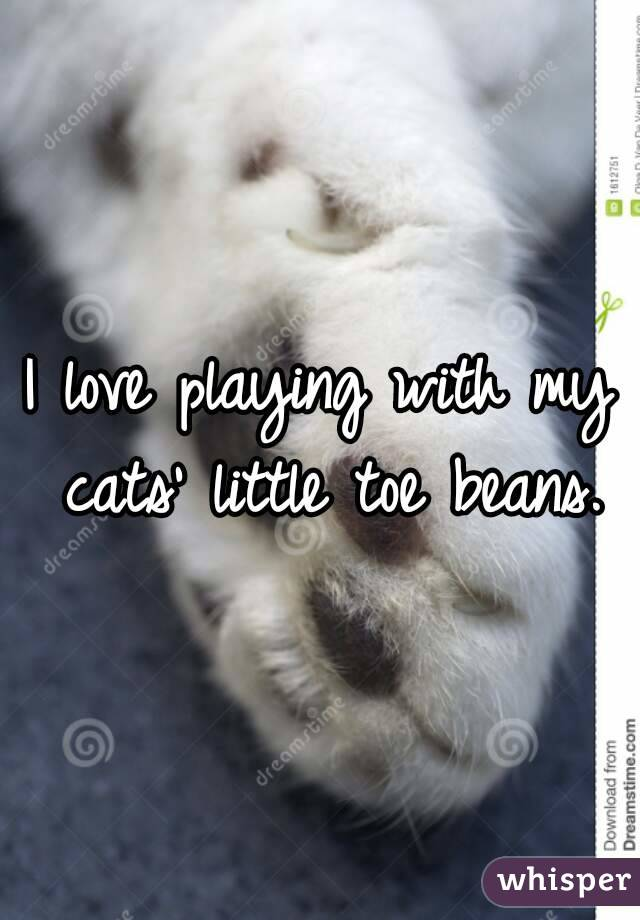 I love playing with my cats' little toe beans.