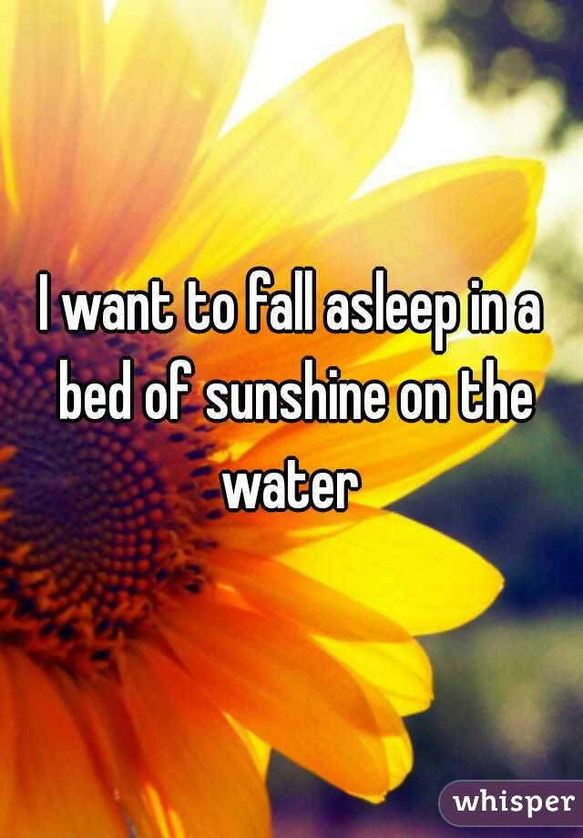I want to fall asleep in a bed of sunshine on the water