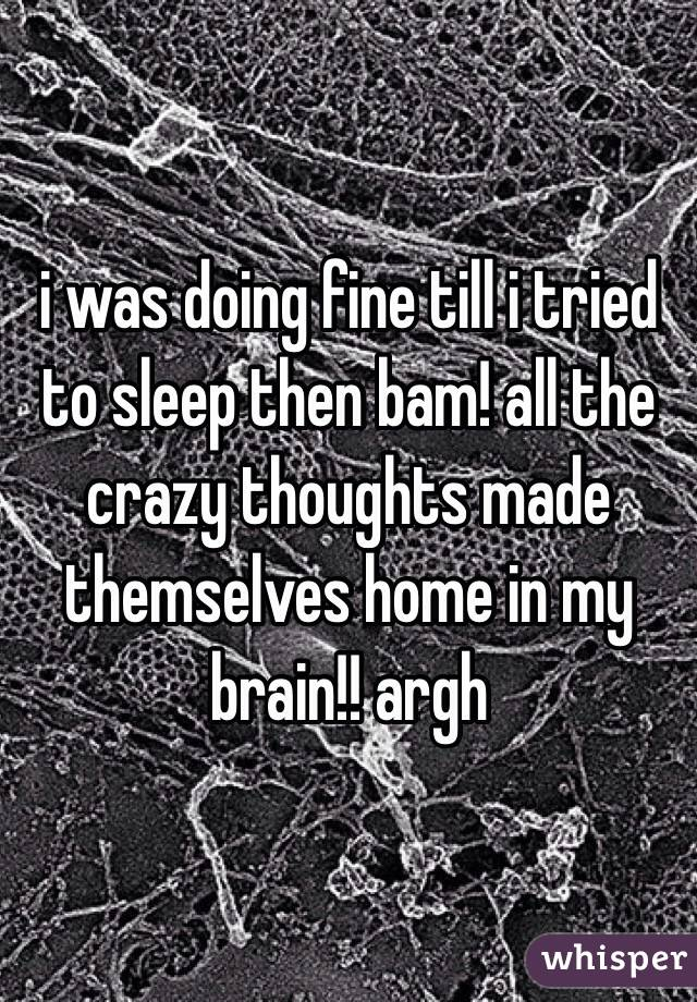 i was doing fine till i tried to sleep then bam! all the crazy thoughts made themselves home in my brain!! argh