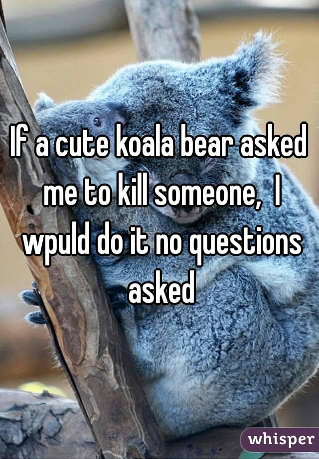 If a cute koala bear asked me to kill someone,  I wpuld do it no questions asked