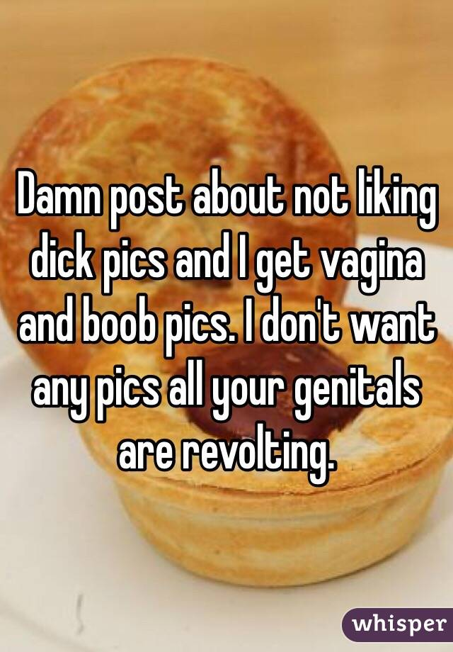 Damn post about not liking dick pics and I get vagina and boob pics. I don't want any pics all your genitals are revolting.