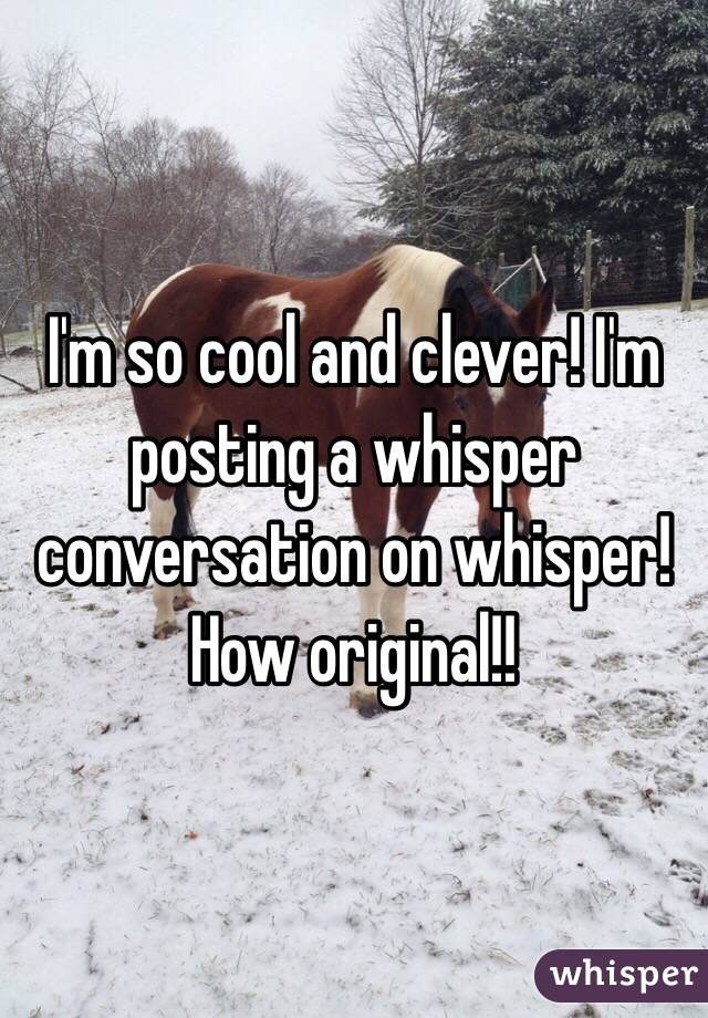 I'm so cool and clever! I'm posting a whisper conversation on whisper! How original!!