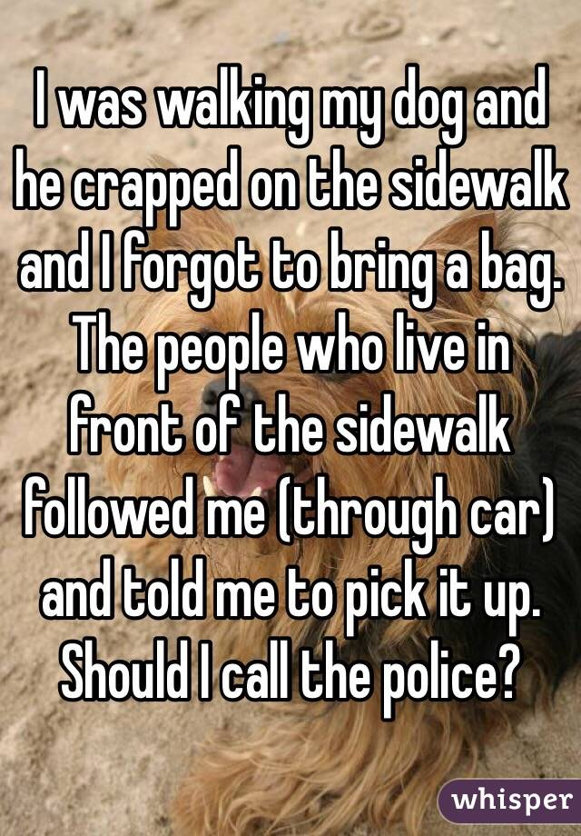 I was walking my dog and he crapped on the sidewalk and I forgot to bring a bag. The people who live in front of the sidewalk followed me (through car) and told me to pick it up. Should I call the police?