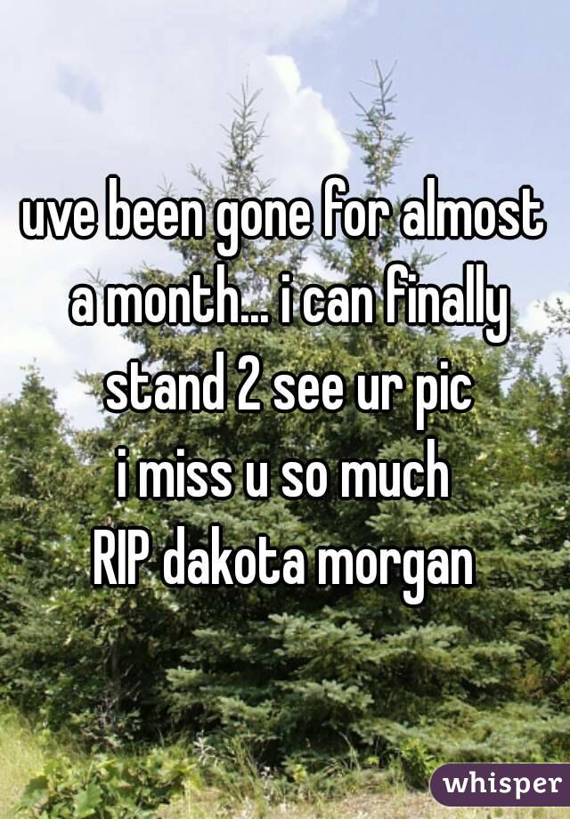 uve been gone for almost a month... i can finally stand 2 see ur pic i miss u so much RIP dakota morgan
