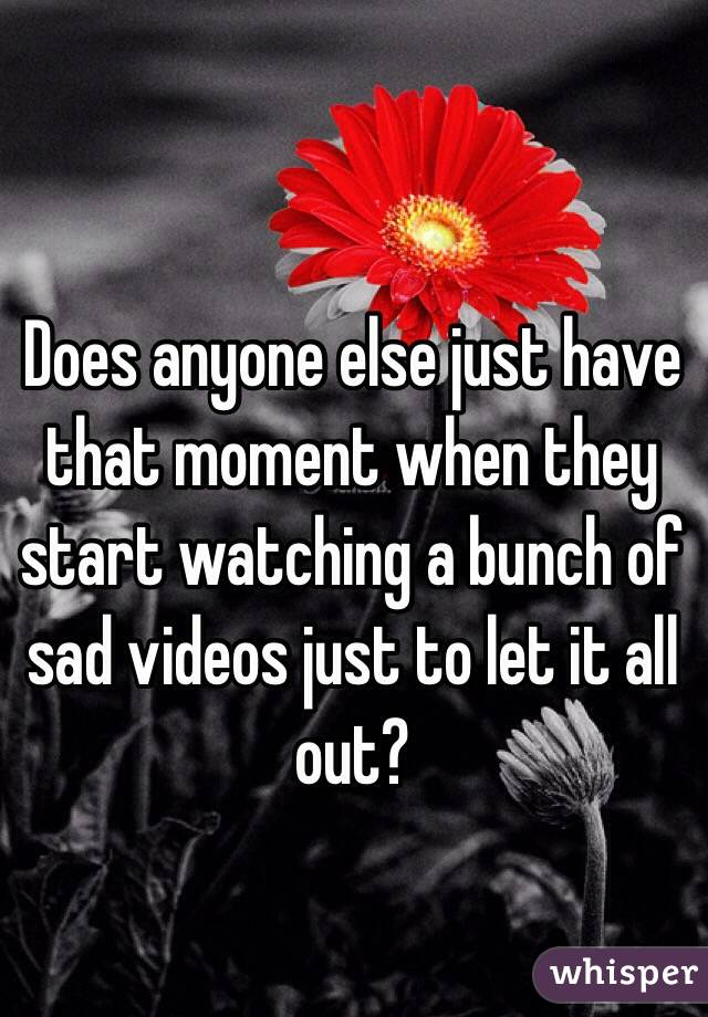 Does anyone else just have that moment when they start watching a bunch of sad videos just to let it all out?