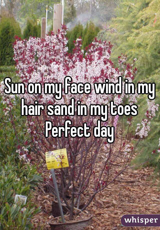 Sun on my face wind in my hair sand in my toes  Perfect day