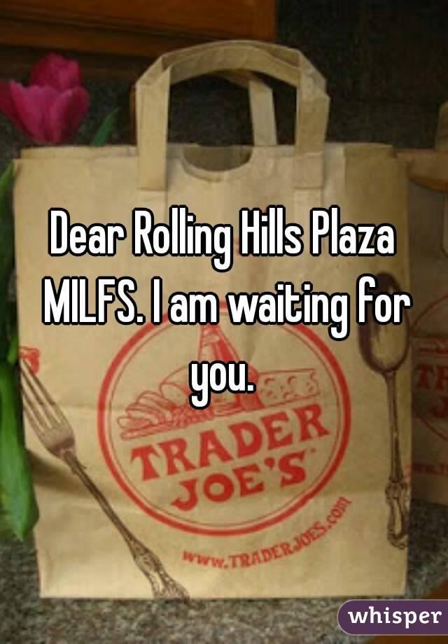 Dear Rolling Hills Plaza MILFS. I am waiting for you.