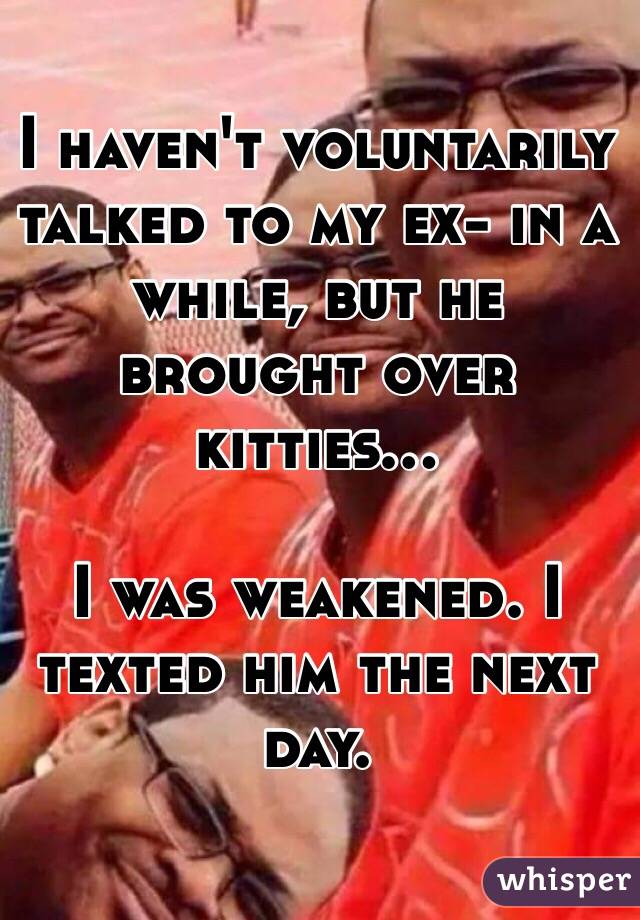 I haven't voluntarily talked to my ex- in a while, but he brought over kitties...  I was weakened. I texted him the next day.