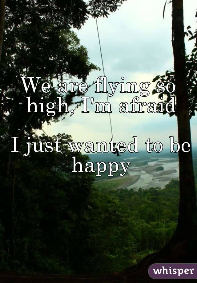 We are flying so high, I'm afraid   I just wanted to be happy