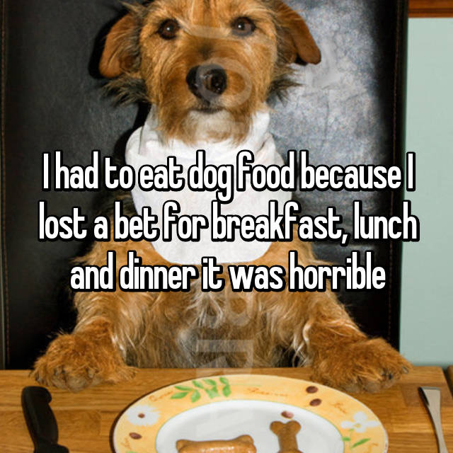 I had to eat dog food because I lost a bet for breakfast, lunch and dinner it was horrible