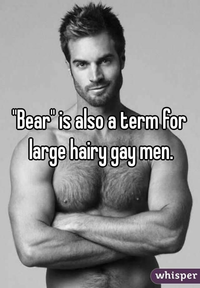 men Hairy gay
