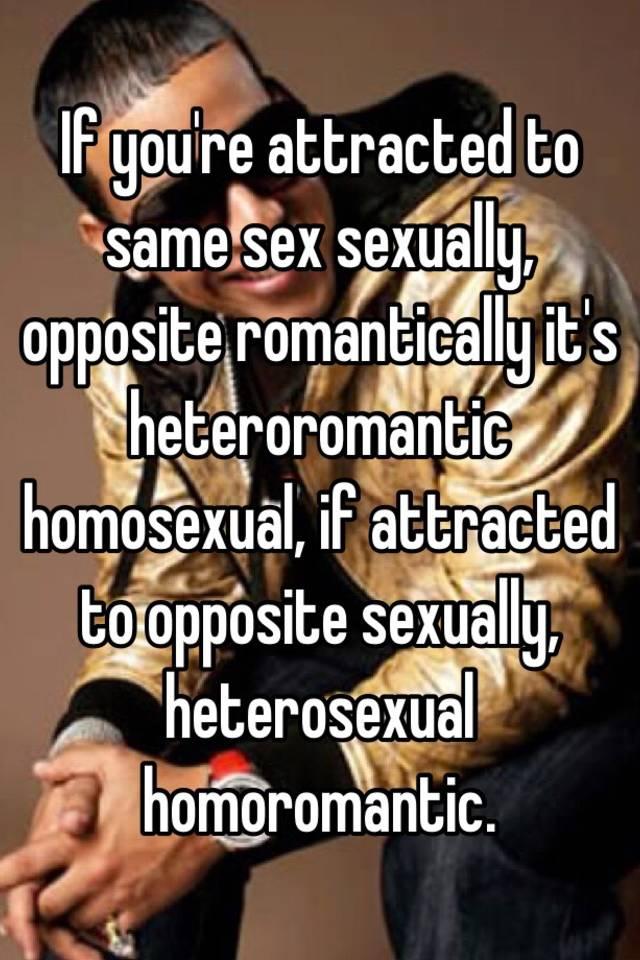 What is a heteroromantic homosexual relationship