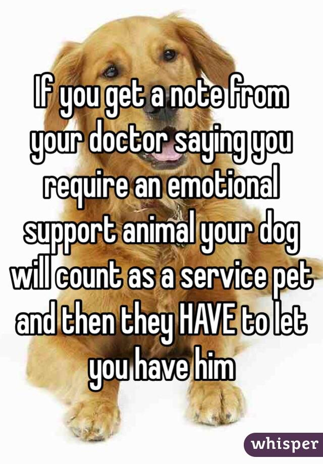 doctors note for service dog